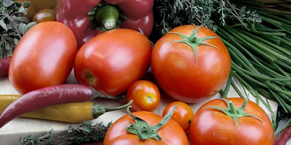 tomato-blog-photo